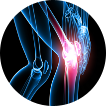 stem cell treatment joints India
